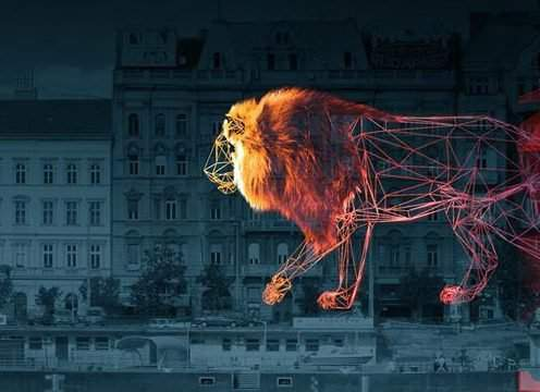 "A huge lion to be ""painted"" on the houses of the Danube coast"