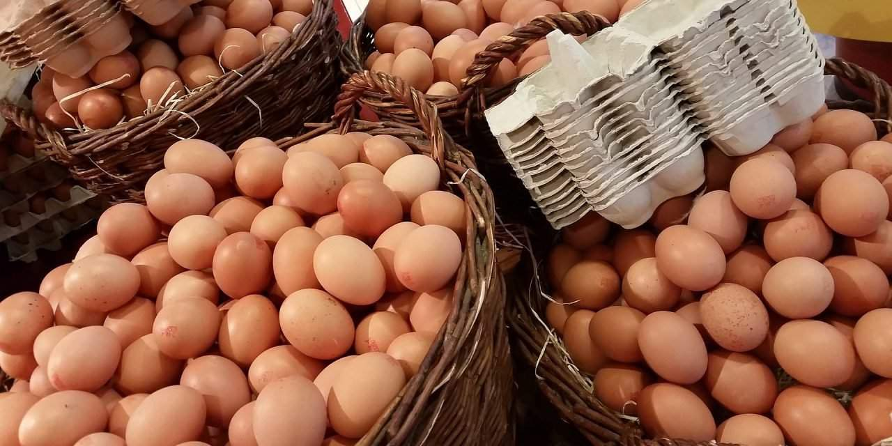 Insecticide contamination detected in Hungarian eggs