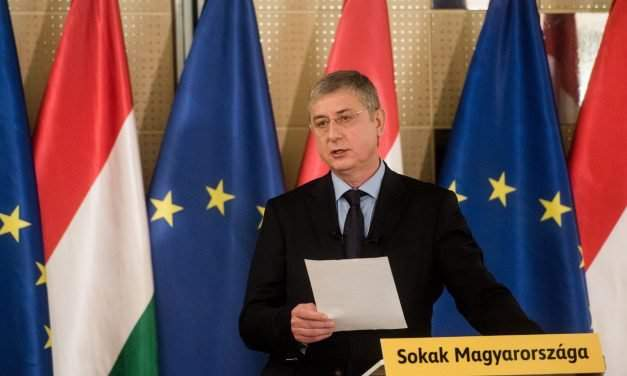 DK re-elects Gyurcsány for party leader