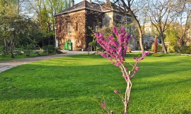 Magical places in Budapest that you won't find in guidebooks