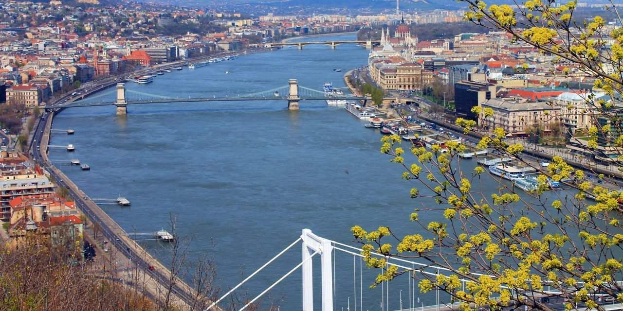 Majority of Hungarian CEOs still expect economic growth