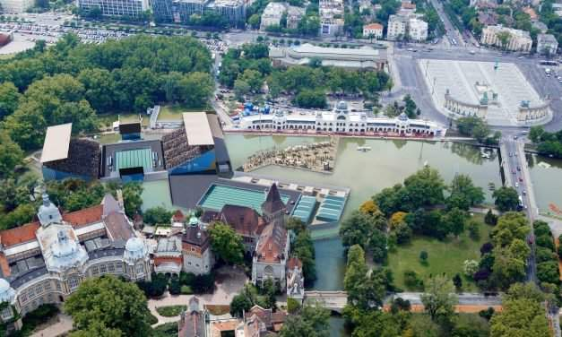17th FINA World Championships in Budapest: Synchronised swimming to be held on the City Park Lake