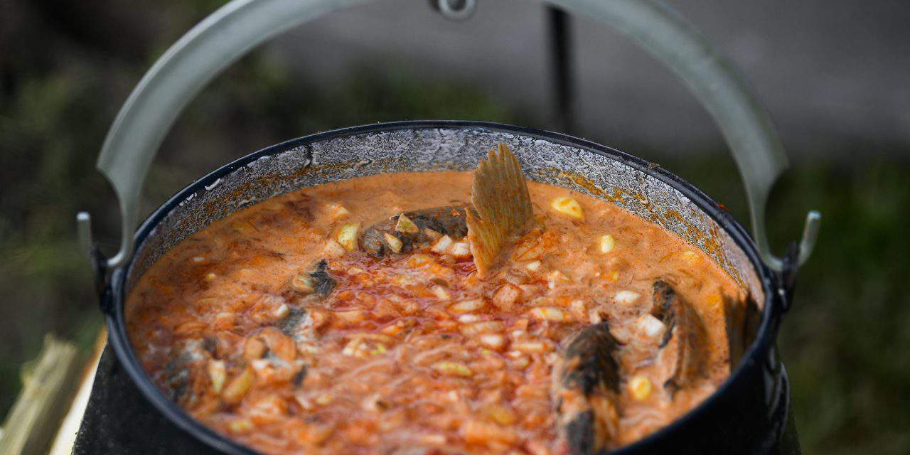 Fish soup of the Tisza region and Egri Bikavér to become Hungarikums