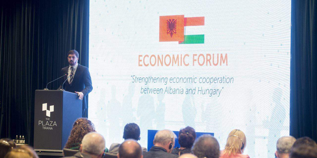 Albania offers great opportunities for Hungarian firms, says government official