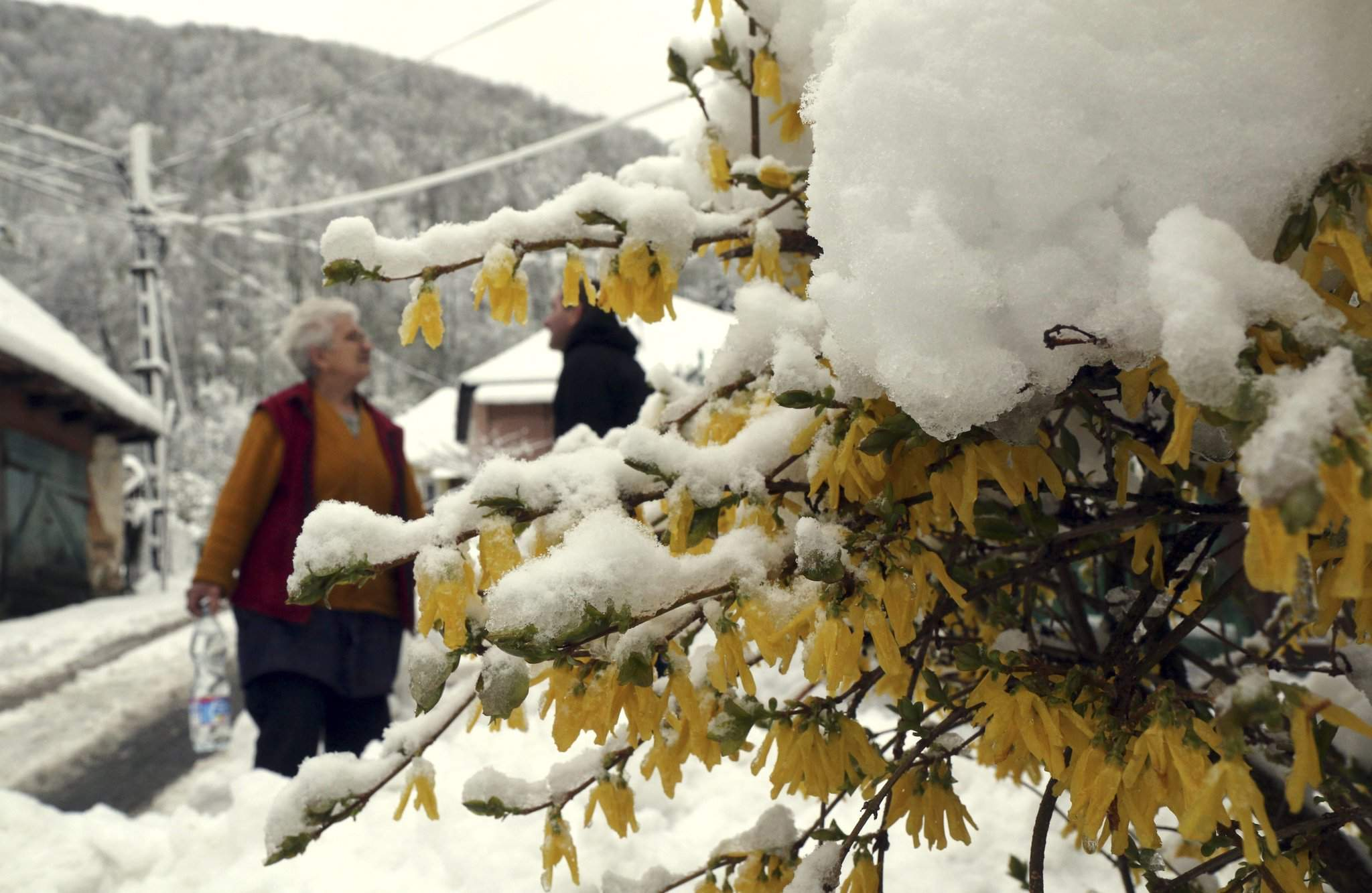 New Cold Record Set For April 20 Photos Daily News Hungary