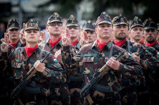 army hungarian defense forces