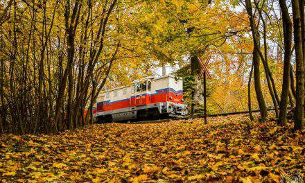6 special train routes to try in Hungary