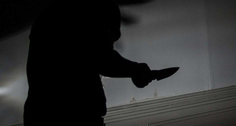 murder crime Hungarian ninja