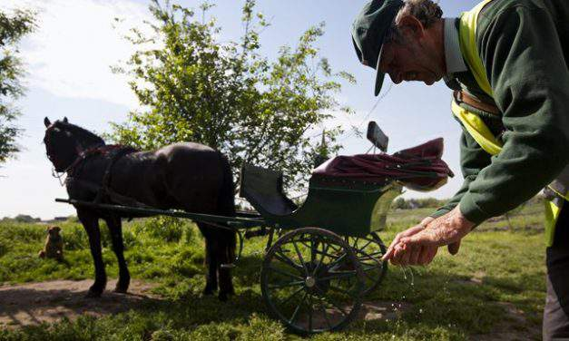 The last functioning Hungarian mail-cart to become a Hungarikum?