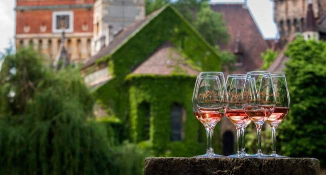 On this weekend: Rosalia festival – Rosé and Champagne heaven in the Budapest City Park