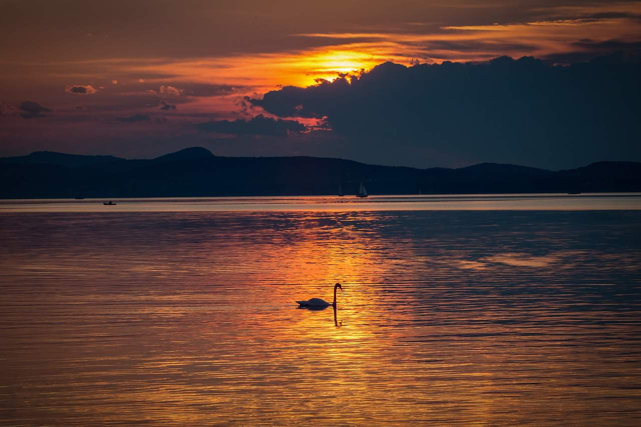 the lake balaton by - photo #30