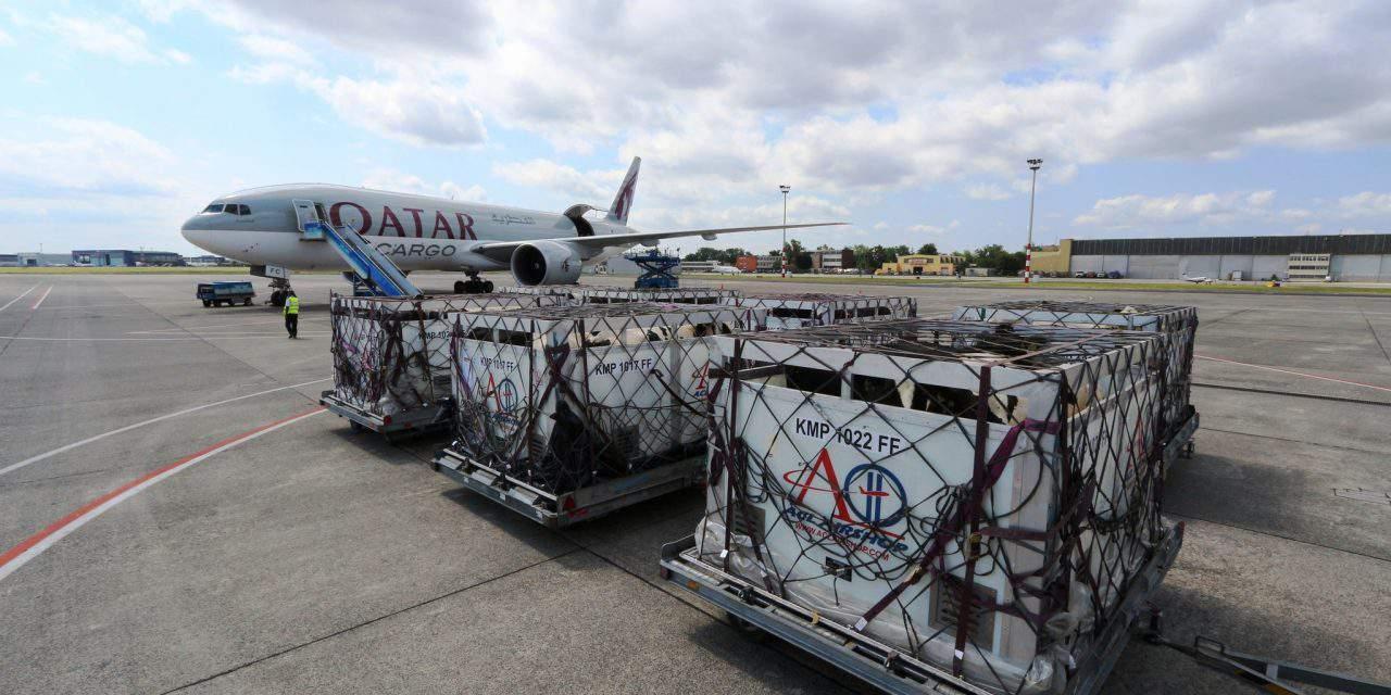 Jumbo takes Hungarian calves to Qatar
