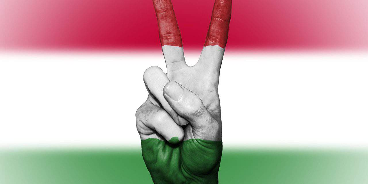 Anyone born Hungarian anywhere in the world should be able to remain Hungarian