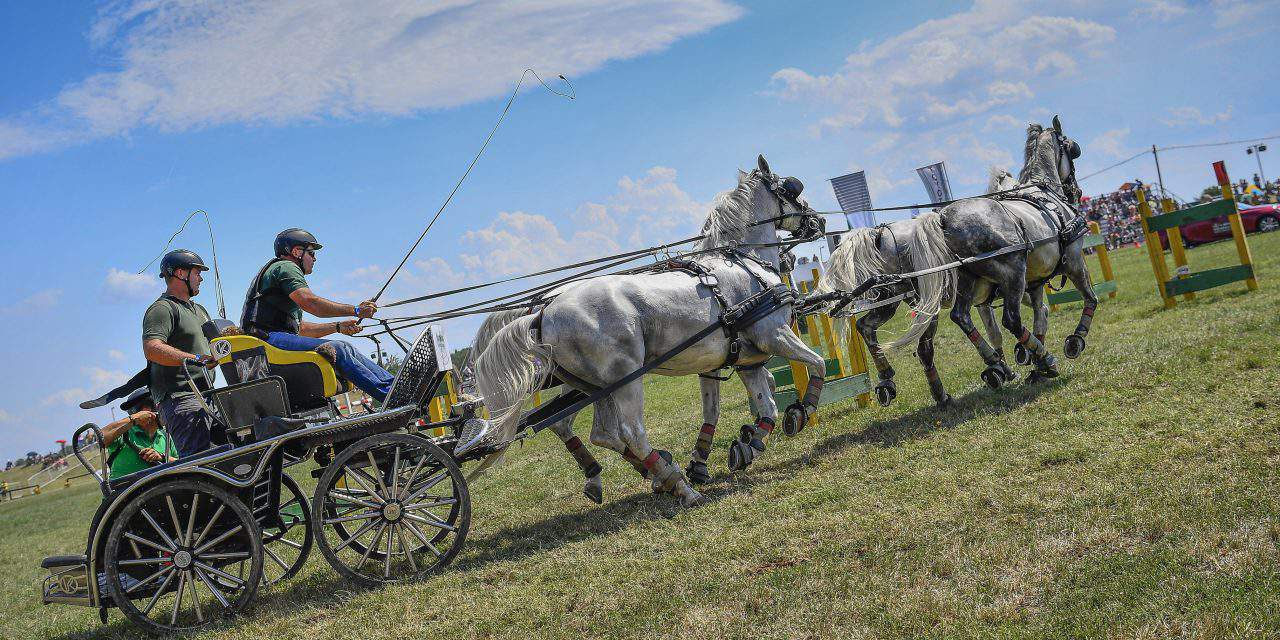 A horse-lovers paradise: the Hortobágy Equestrian Days