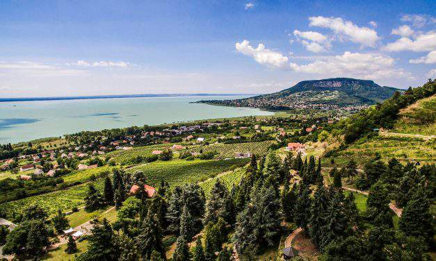7 most beautiful arboretums in Hungary – PHOTOS