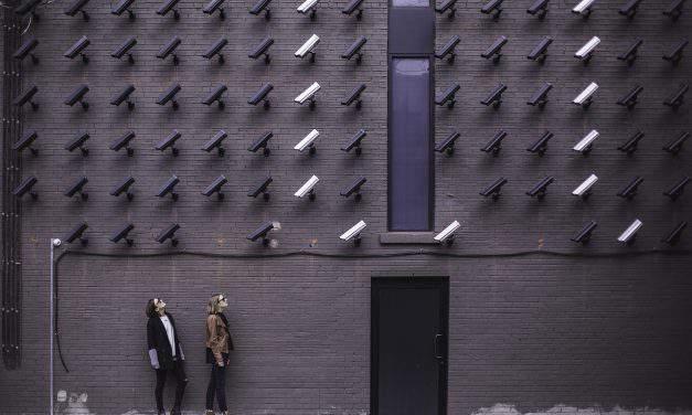 LMP decries interior ministry's alleged draft surveillance bill