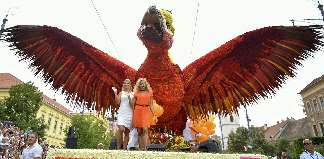 A reborn Phoenix is the winner of the Flower Carnival of Debrecen