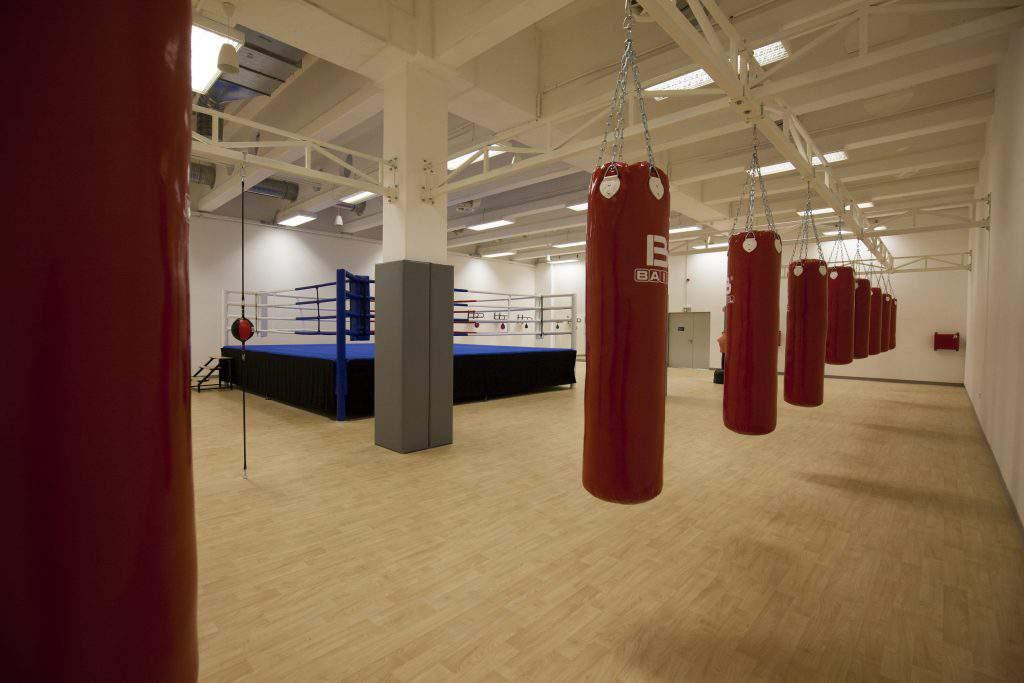 Haladás boxing club