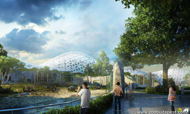 Central Europe's biggest and most modern aquarium to be built in Budapest