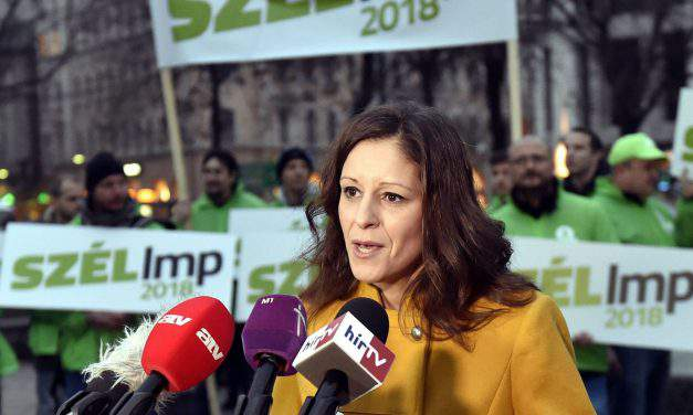 LMP co-leader discusses EU social pillar with Green EP leader