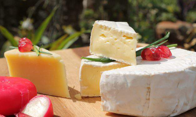 Hungarian cheese making on the rise