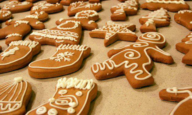 Gingerbread village is baked for charity fundraising