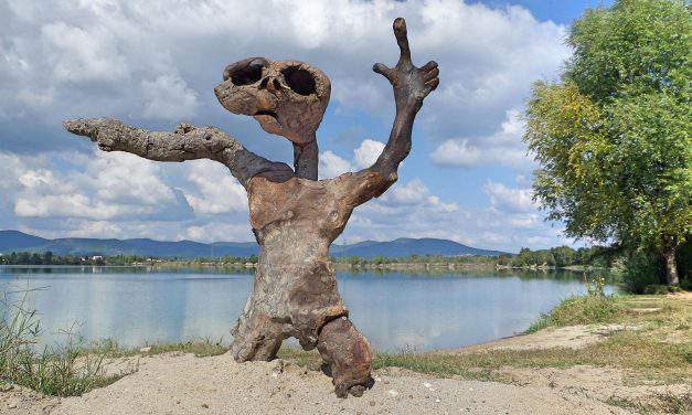Amazing land art on the coast of Danube – Photo Gallery