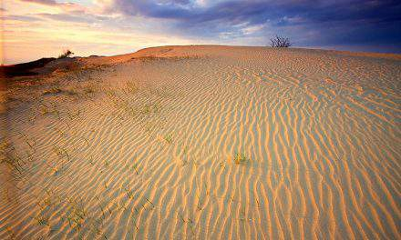Get to know the Hungarian desert