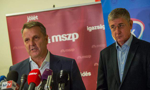 Socialists, DK agree not to challenge one another in individual constituencies