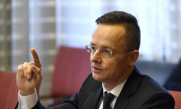 Hungarian FM: EU is right to back Hungary on Ukraine education law issue
