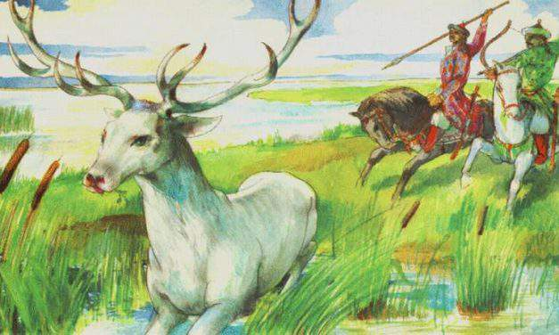 The sacred animals of ancient Hungarians