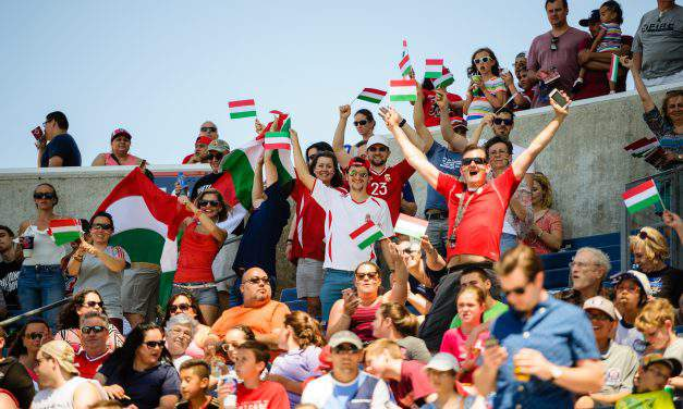 Hungarian success stories of 2017