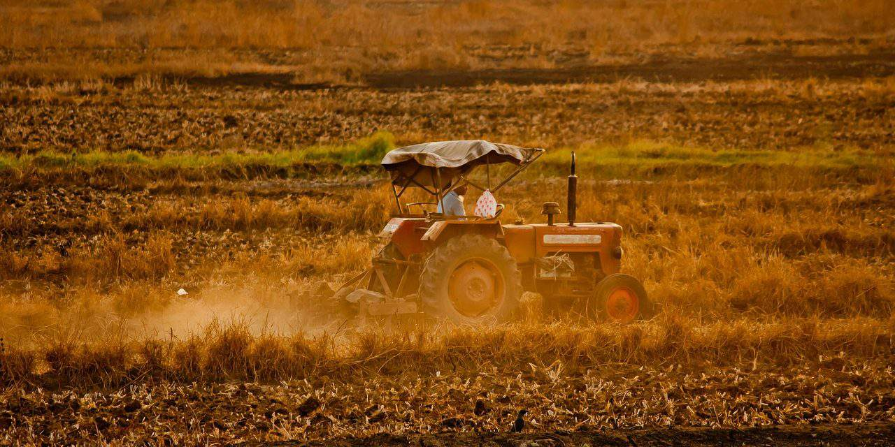 The price of the Hungarian soil is heavily increasing