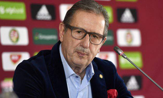 Hungarian football – Leekens: The smallest detail could be decisive