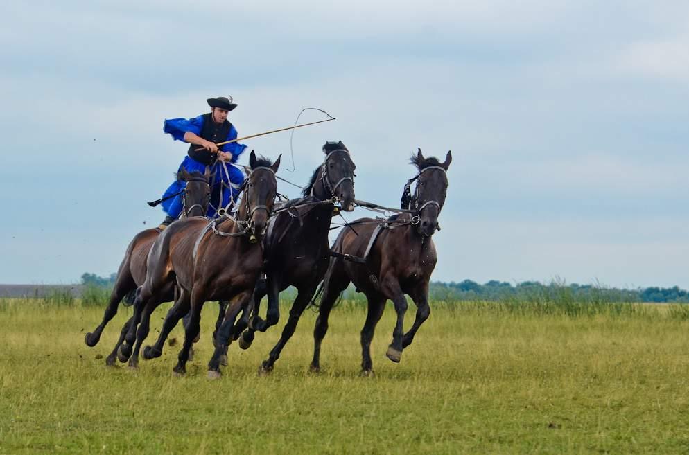 Hortobágy horse betyár
