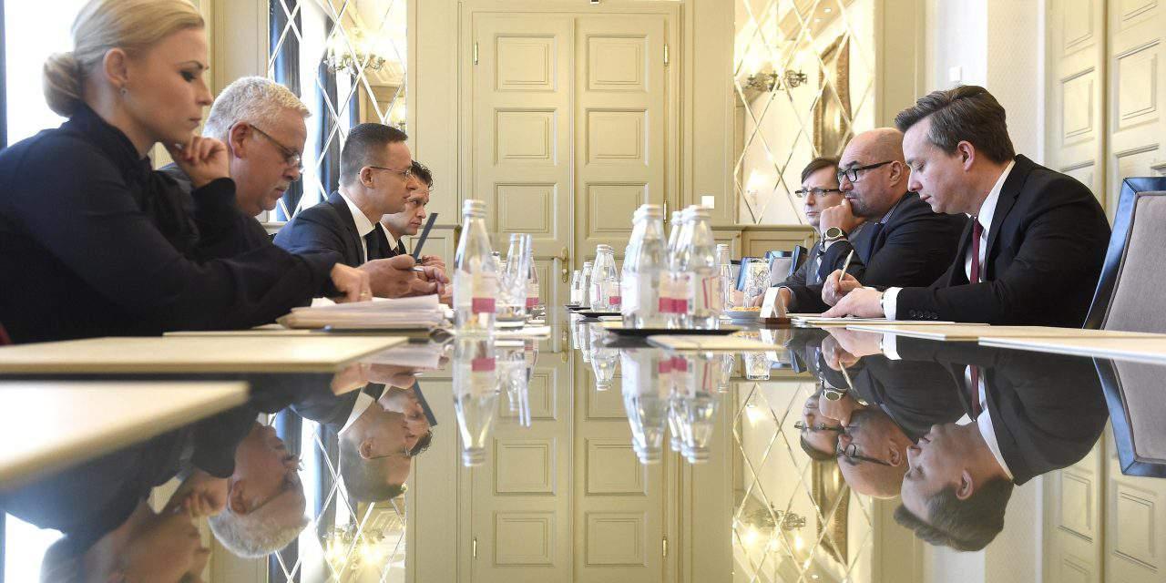 Foreign minister, Transcarpathian leader discuss Ukraine education law