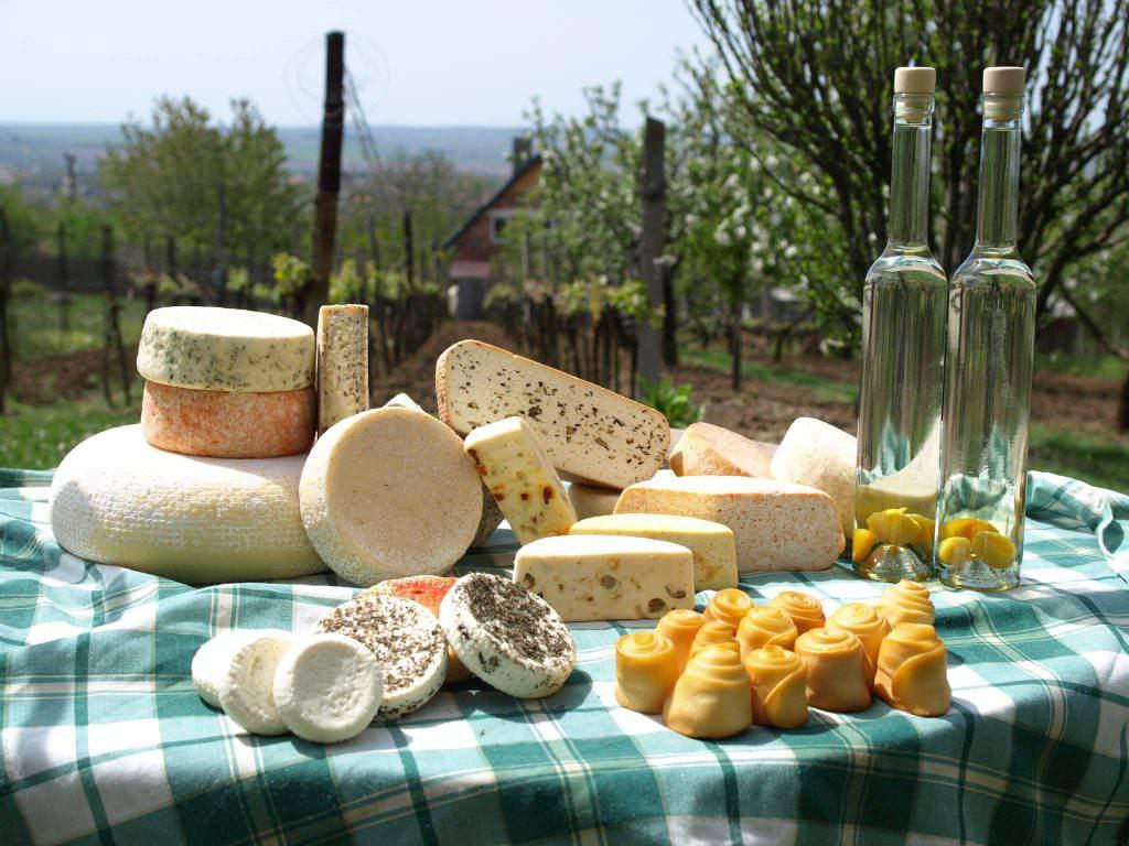 cheese sajt Csíz Sajtműhely manufacture
