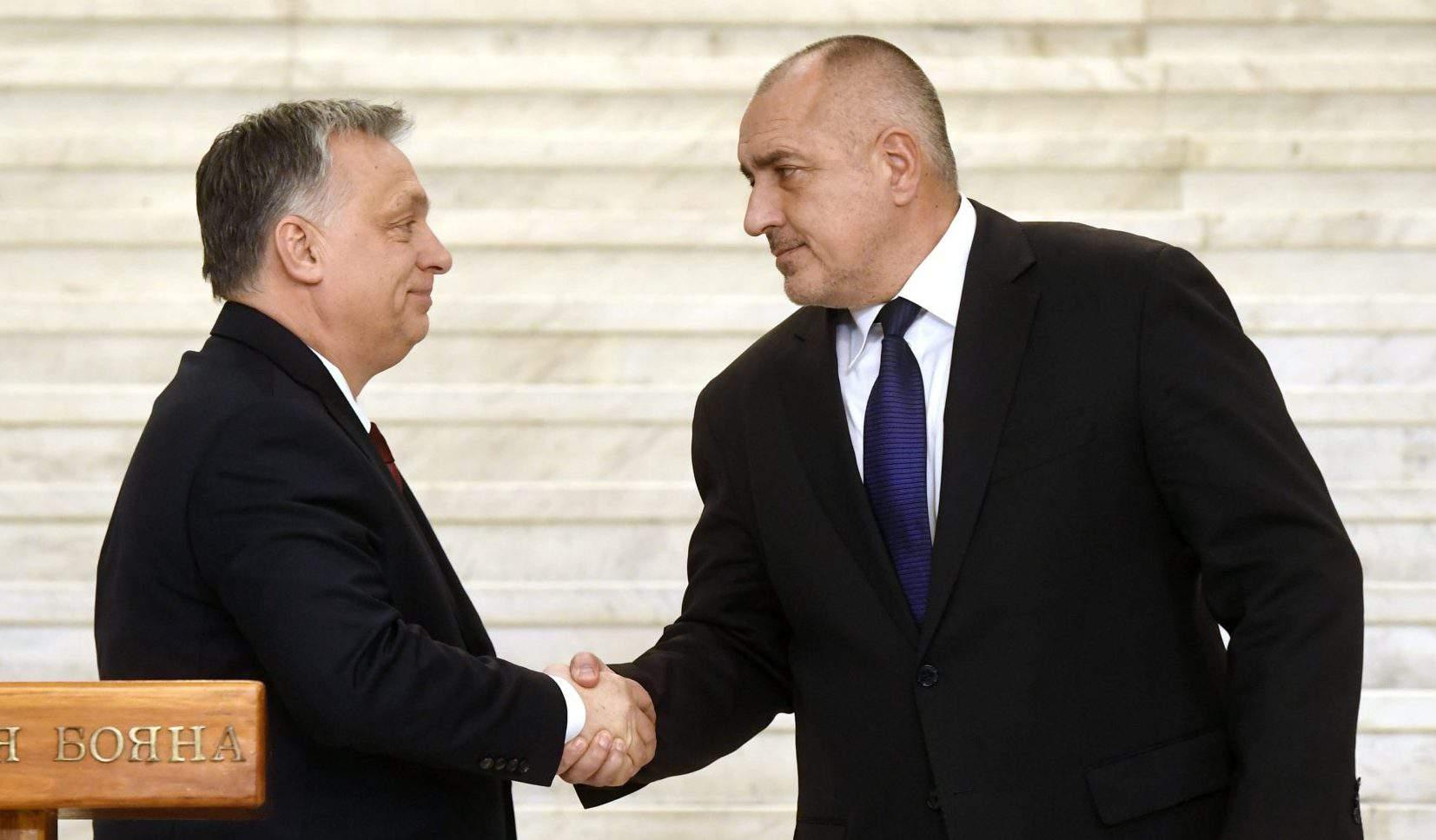 Orbán Boyko