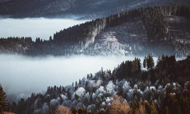 Winter Wonderland in Transylvania – PHOTO GALLERY
