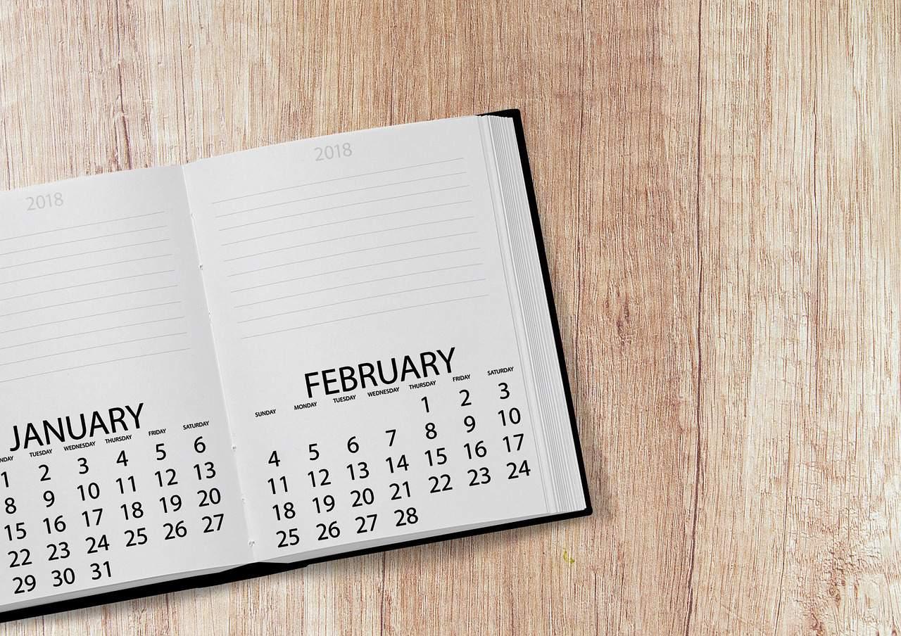 january calendar public holiday
