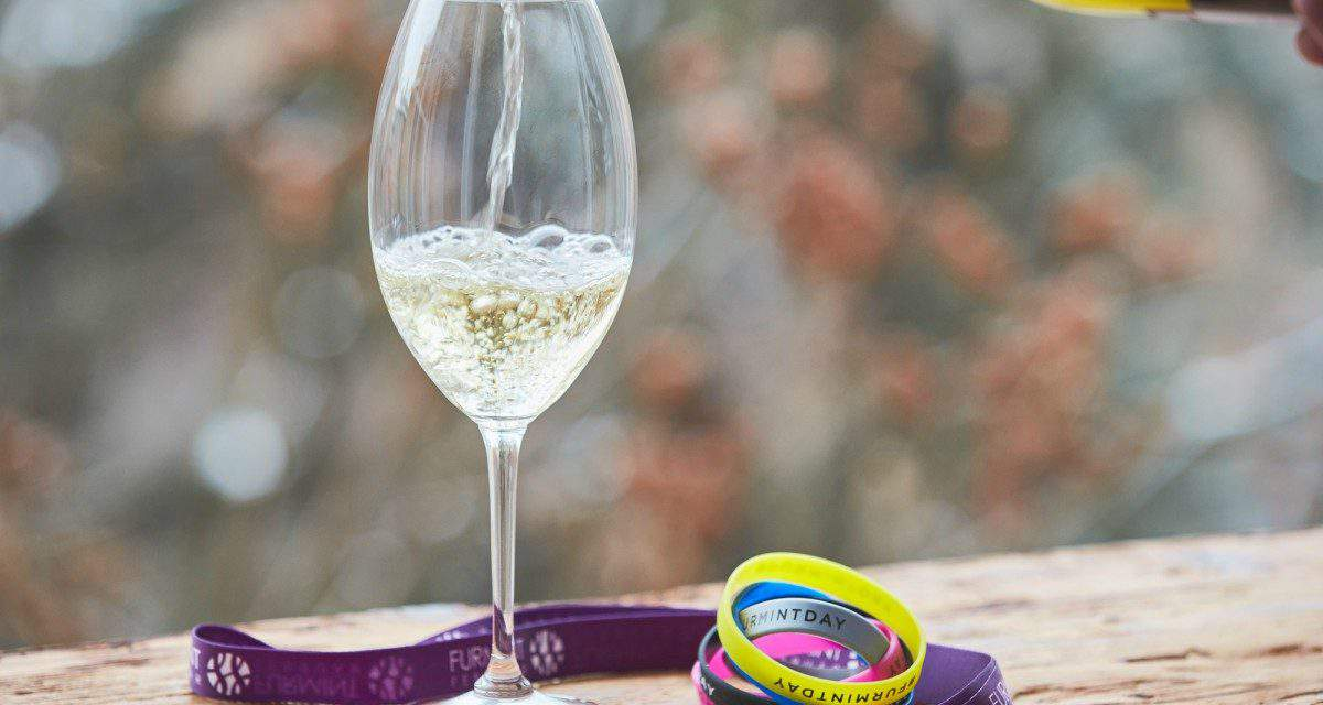 February, the Month of Furmint – A must-try wine experience
