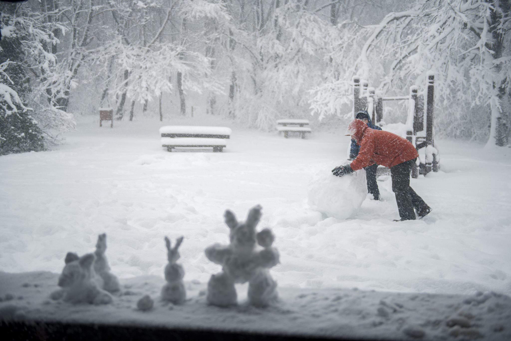 weather winter snow forecast