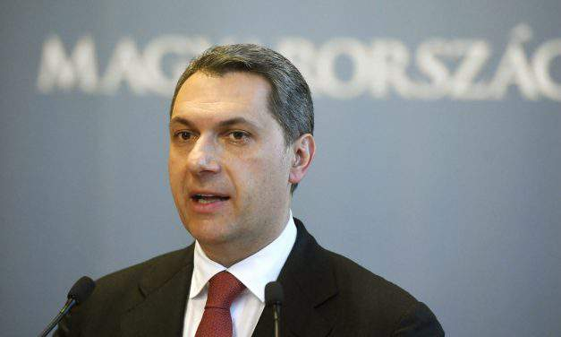 Hungarian government focused on building central European alliances