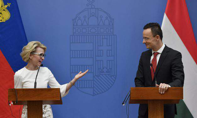 Hungary and Liechtenstein are cooperating effectively in international organisations