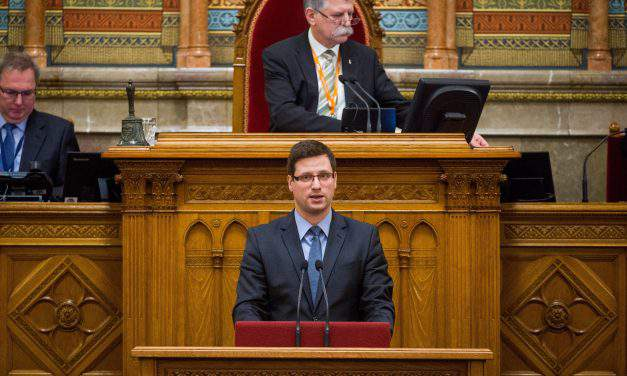 Fidesz group leader: Opposition victory would lead to early elections