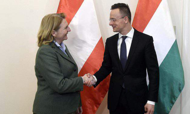 Hungarian FM: Austria, Hungary 'friendly relations restored'