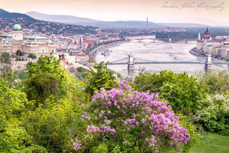 Budapest photography