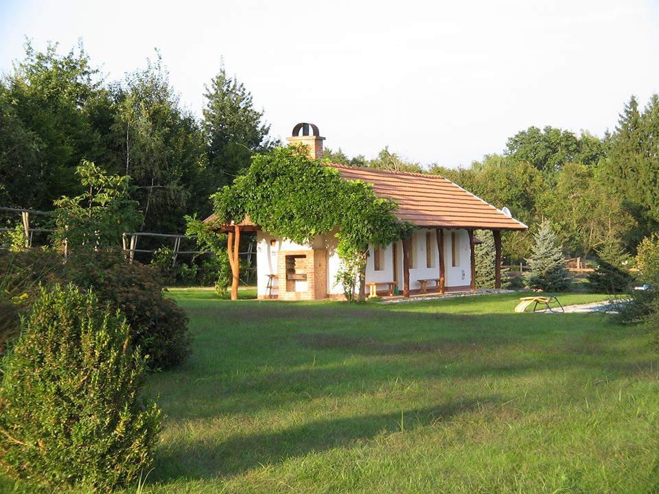 treehouse nature accommodation