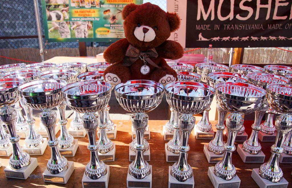 bear farm Veresegyháza zoo prize award