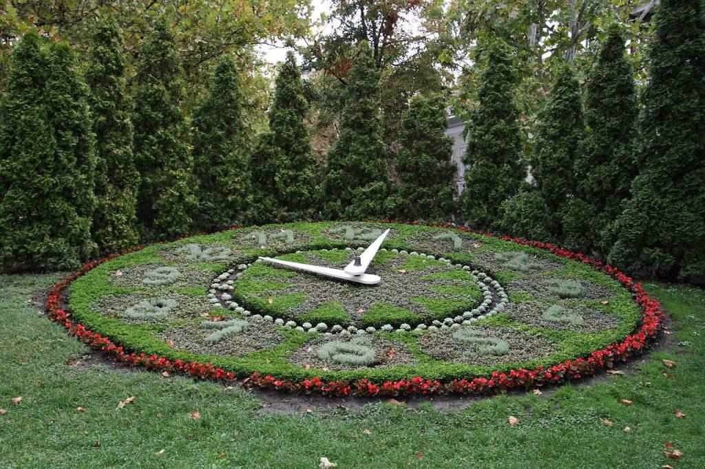 Székesfehérvár virágóra flower clock